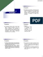 15 - Puerpério Fisiológico e Patológico.pdf