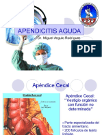 7apendicitis-aguda-1223625968681166-9.pdf