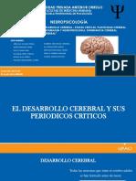10 - NEUROPSIC TEMA 4 ACTUALIZADO.pptx