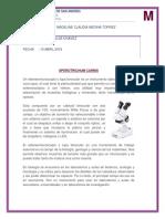 estereomicrooscopio.docx