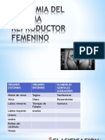 C 3=ANATOMIA DEL SISTEMA REPRODUCTOR FEMENINO.pptx