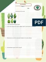 INFORME EN-015 Cactus I.docx
