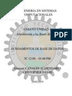 Ensayo Base de Dtaos.pdf