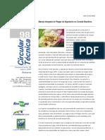 CIRTEC98.pdf