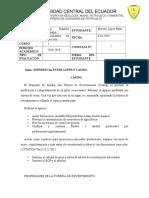 consulta-2.docx