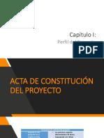 Perfil Del Proyecto (1)