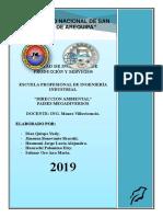 PAIS MEGADIVERSO 2.docx