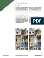 luminous data.pdf
