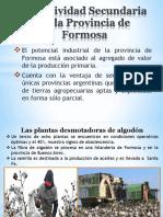 La industria en la Provincia de Formosa - copia.pptx