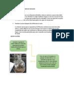 DIAGNOSTICO DE LA GESTION DE RESIDUOS.docx