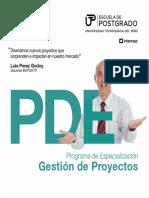 Brochure PDE Gestion de proyectos.pdf