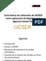 Guía Básica de Utilización de GEISER Como Aplicación