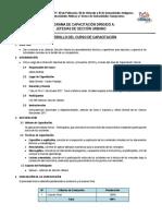 Programa Dirigido a Jefes de Sección Urbano Final 031017