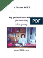matija111.pdf