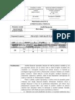 audit_financiar (2).doc