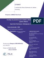 these doctorat.pdf