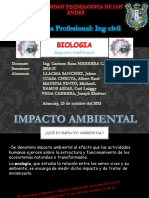 Impacto Ambiental - Abancay