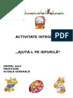 120029950 Proiect Activitate Integrata