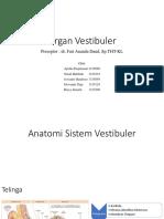 Css Organ Vestibuler Fix