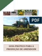 guia pratico pra producao de amendoim