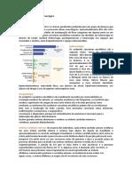 T05 - Revisão - AVE Isquêmico e AVE Hemorrágico.docx
