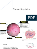 Physiological Control of Plasma Glucose