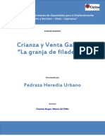 PEDRAZA  URBANO Formato Plan GALLINA.docx