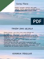 Cacing Filaria Dan Pita