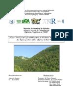 Lavorini_analyse_2010.pdf