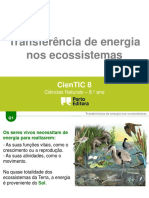 g1 Transferc3aancias de Energia
