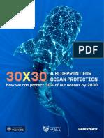 Greenpeace - 30x30 Blueprint Report