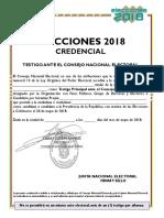 Formato Consejo Nacional