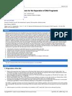 protocolo electroforessis