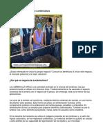 Como Poner Un Negocio de Lombricultura - Guía de Negocio