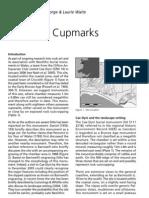 Cae-Dyni Cupmarks.