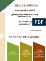proceso de amparo.pdf