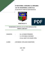 Practica 2 - Bioremediacion de hidrocarburos.docx