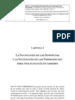 de Sousa Santos, Boaventura La Sociología de las Ausencias y la Sociología de las emergencias