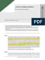efeitos sociais da morfologia arquitetoica.pdf