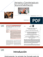 Equinoterapia, Canoterapia y TAA