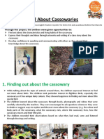 NEL Portal Activity Idea Flora and Fauna All About Cassowaries PCF Braddell Heights
