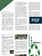Triptico Educacion Arte y Ecologia 1