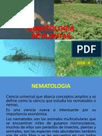 NEMATOLOGIA  luis.pdf