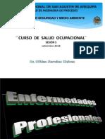 5 a Enfermedades Profesionales.pdf