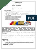 Proyecto DBP