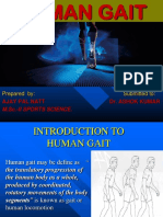Ajay Pal Seminar on Human Gait