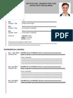 28-curriculum-vitae-contemporaneo-gris-97-2003.docx