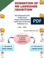 Second Language Acquisiton (SLA)