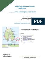 UNMSM 2019 Bloq Adrenergicos y Gestac