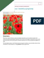 Mac (Papaver Rhoeas) - Beneficii Și Proprietăți